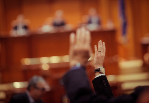 Shareholders' Resolution